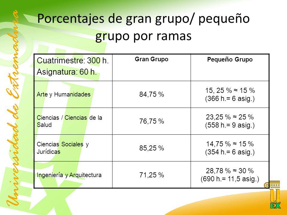 Porcentajes de gran grupo/ pequeño grupo por ramas Cuatrimestre: 300 h.