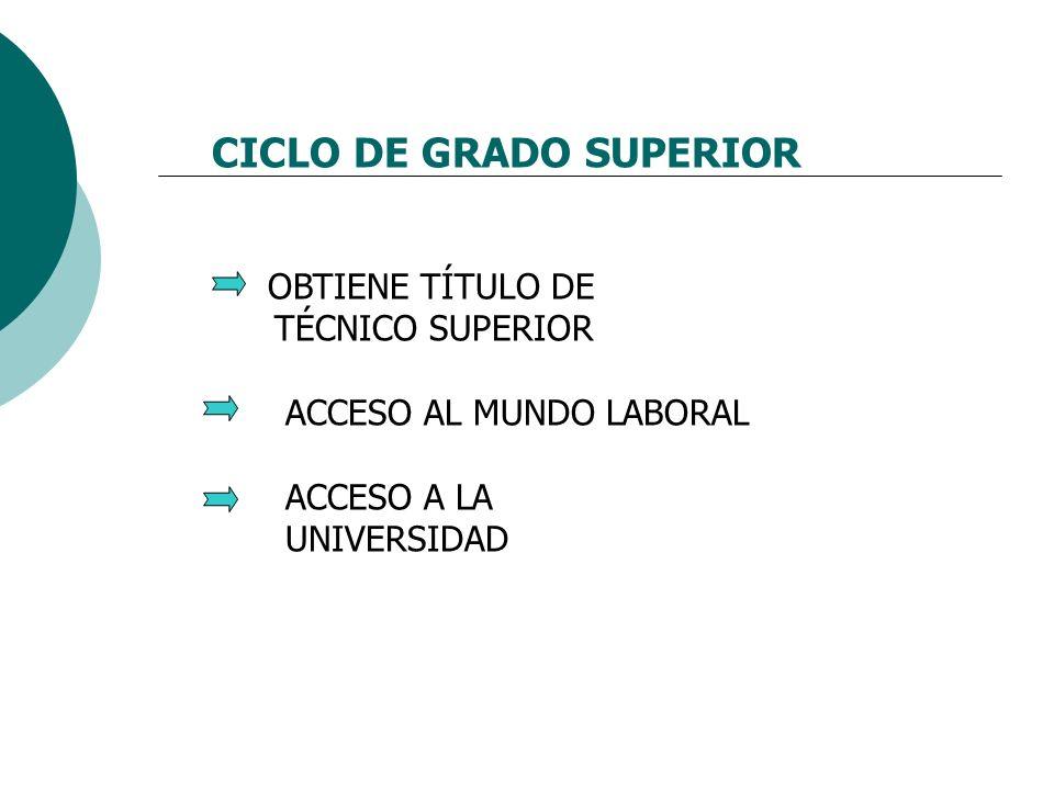 CICLO DE GRADO SUPERIOR OBTIENE TÍTULO DE TÉCNICO SUPERIOR ACCESO AL MUNDO LABORAL ACCESO A LA UNIVERSIDAD