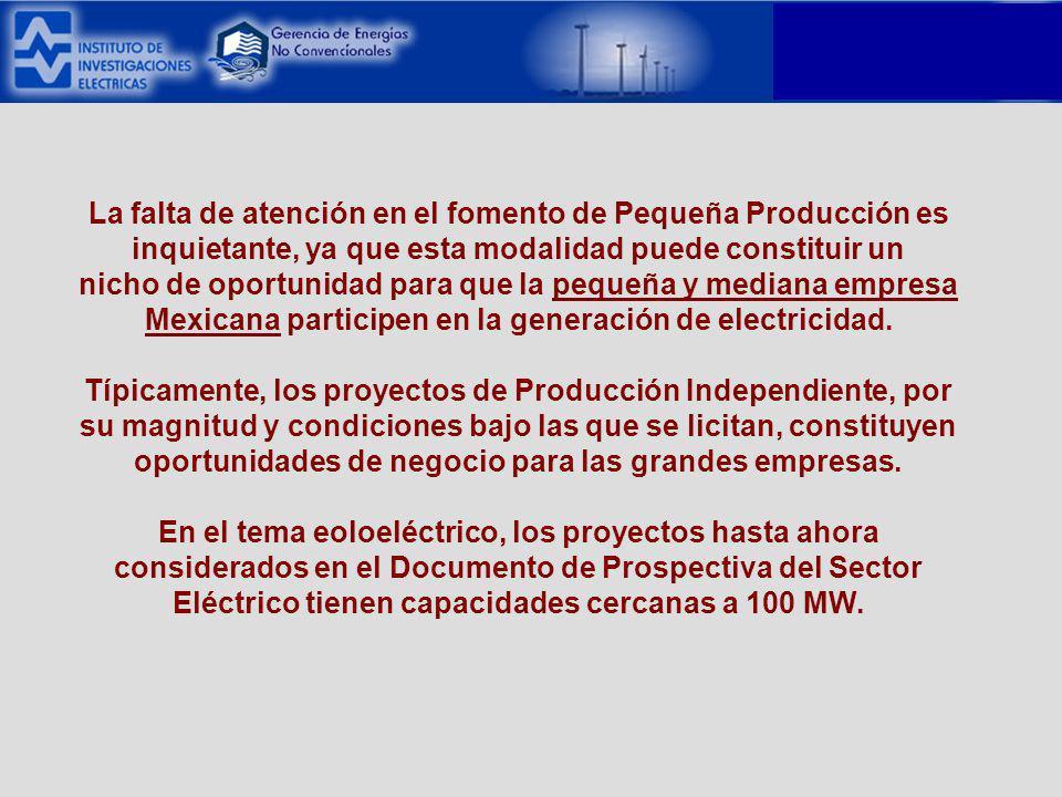 La falta de atención en el fomento de Pequeña Producción es inquietante, ya que esta modalidad puede constituir un nicho de oportunidad para que la pequeña y mediana empresa Mexicana participen en la generación de electricidad.