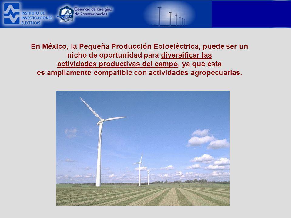 En México, la Pequeña Producción Eoloeléctrica, puede ser un nicho de oportunidad para diversificar las actividades productivas del campo, ya que ésta es ampliamente compatible con actividades agropecuarias.