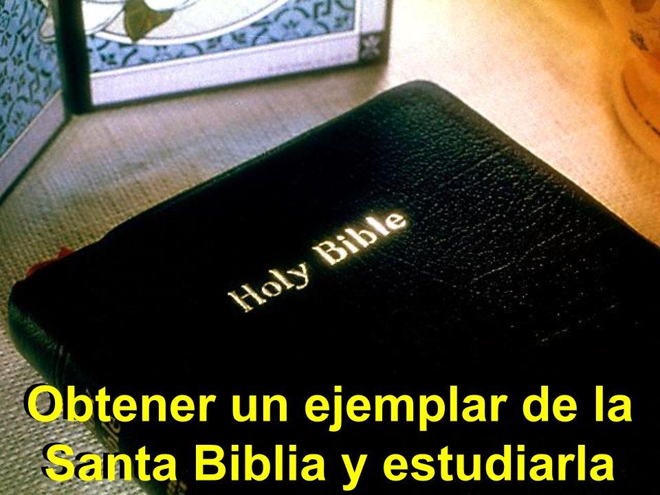 Obtener un ejemplar de la Santa Biblia y estudiarla