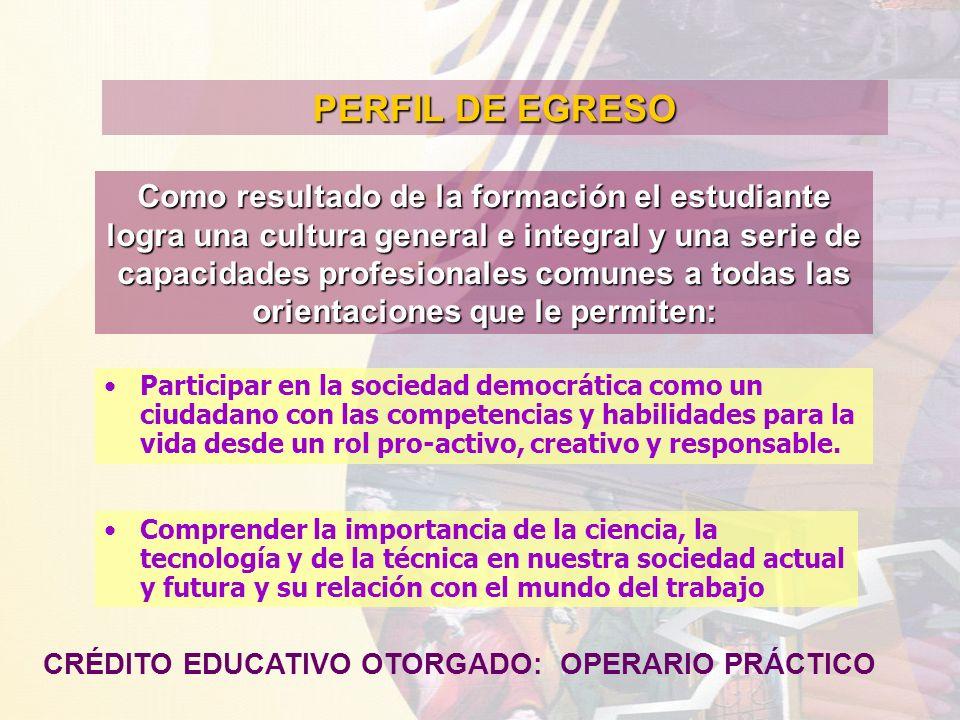 PERFIL DE EGRESO Como resultado de la formación el estudiante logra una cultura general e integral y una serie de capacidades profesionales comunes a