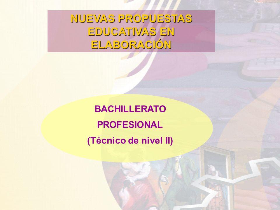 NUEVAS PROPUESTAS EDUCATIVAS EN ELABORACIÓN BACHILLERATO PROFESIONAL (Técnico de nivel II)