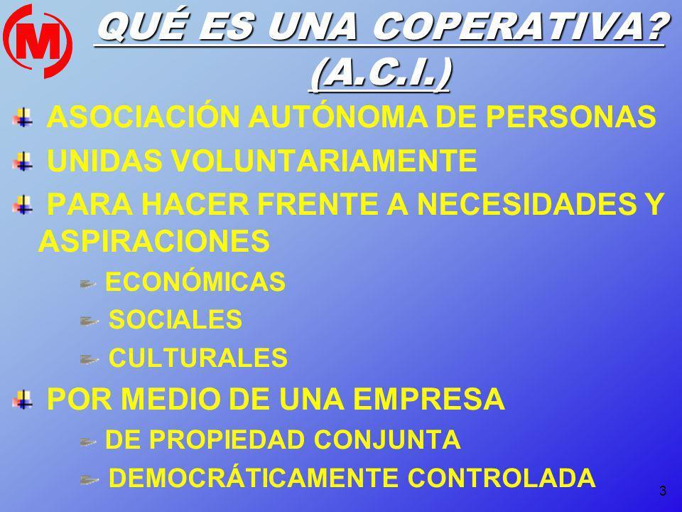 4 PRINCIPIOS BÁSICOS ORGANIZACIÓN DEMOCRÁTICA PARTICIPACIÓN EN LA GESTIÓN PARTICIPACIÓN EN LOS RESULTADOS CADA PERSONA UN VOTO SOLIDARIDAD RETRIBUTIVA PREVALENCIA DEL TRABAJO SOBRE EL CAPITAL SOBERANÍA DEL TRABAJO CARÁCTER INSTRUMENTAL Y SUBORDINADO DEL CAPITAL TRANSFORMACIÓN SOCIAL IMPLICACIÓN EN EL ENTORNO CREACIÓN DE EMPLEO REPARTO DE LA RIQUEZA INTERCOOPERACIÓN CARÁCTER UNIVERSAL EDUCACIÓN