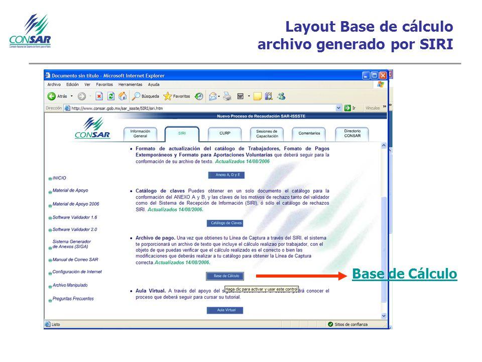 Layout Base de cálculo archivo generado por SIRI Base de Cálculo
