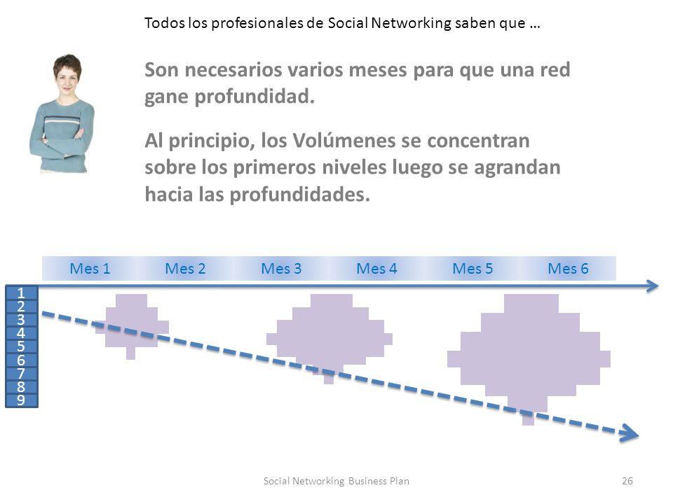 26Social Networking Business Plan Todos los profesionales de Social Networking saben que … 1 2 3 4 5 6 7 8 9 Mes 1Mes 2Mes 3Mes 4Mes 5Mes 6 Son necesarios varios meses para que una red gane profundidad.