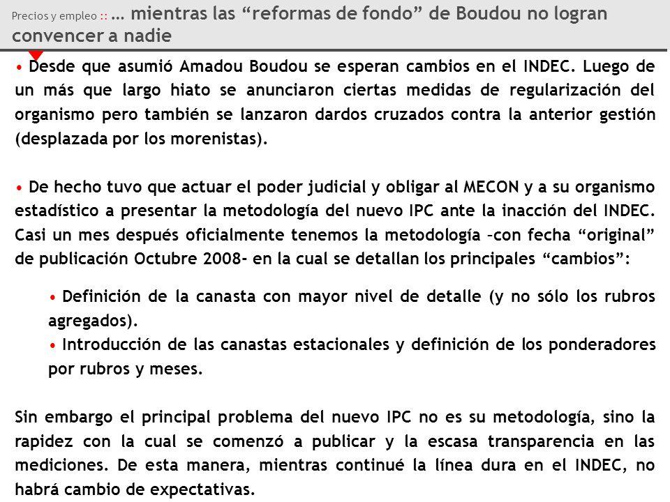Desde que asumió Amadou Boudou se esperan cambios en el INDEC.