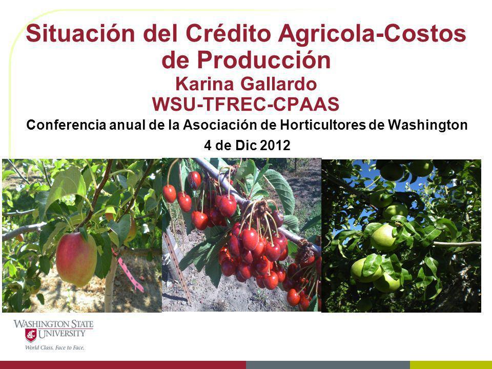 Situación del Crédito Agricola-Costos de Producción Karina Gallardo WSU-TFREC-CPAAS Conferencia anual de la Asociación de Horticultores de Washington