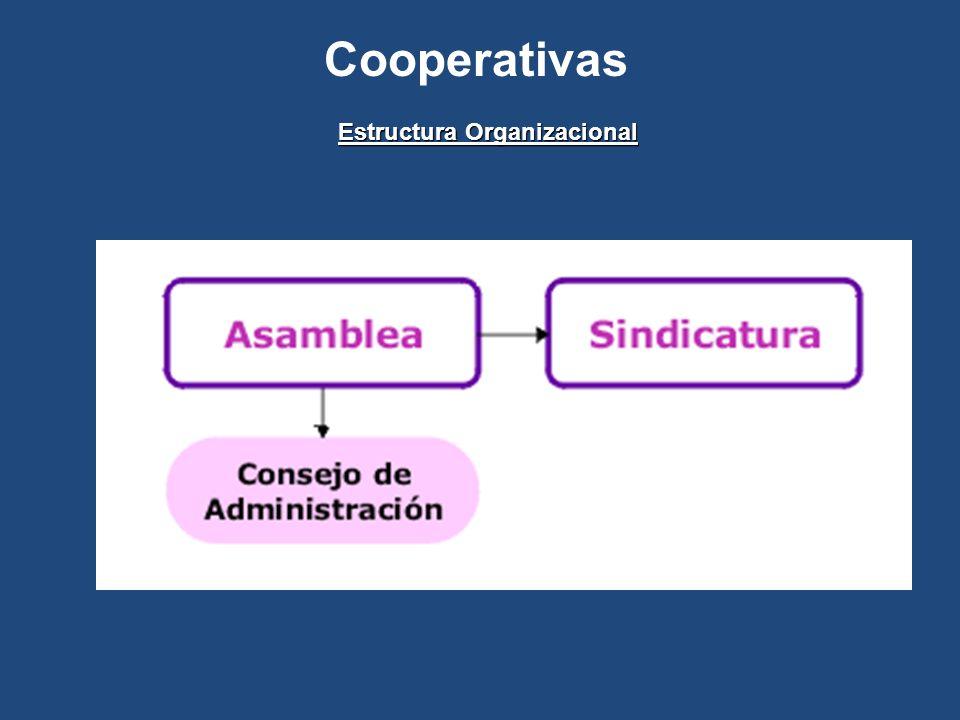 Cooperativas Estructura Organizacional
