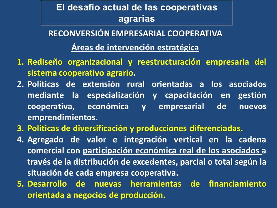 El desafío actual de las cooperativas agrarias RECONVERSIÓN EMPRESARIAL COOPERATIVA Áreas de intervención estratégica 1.Rediseño organizacional y rees