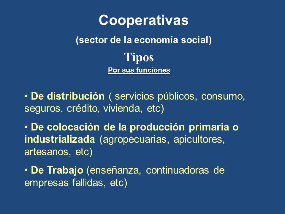 Cooperativas (sector de la economía social) Tipos De distribución ( servicios públicos, consumo, seguros, crédito, vivienda, etc) De colocación de la