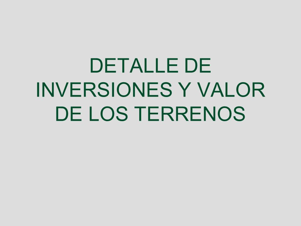 DETALLE DE INVERSIONES Y VALOR DE LOS TERRENOS