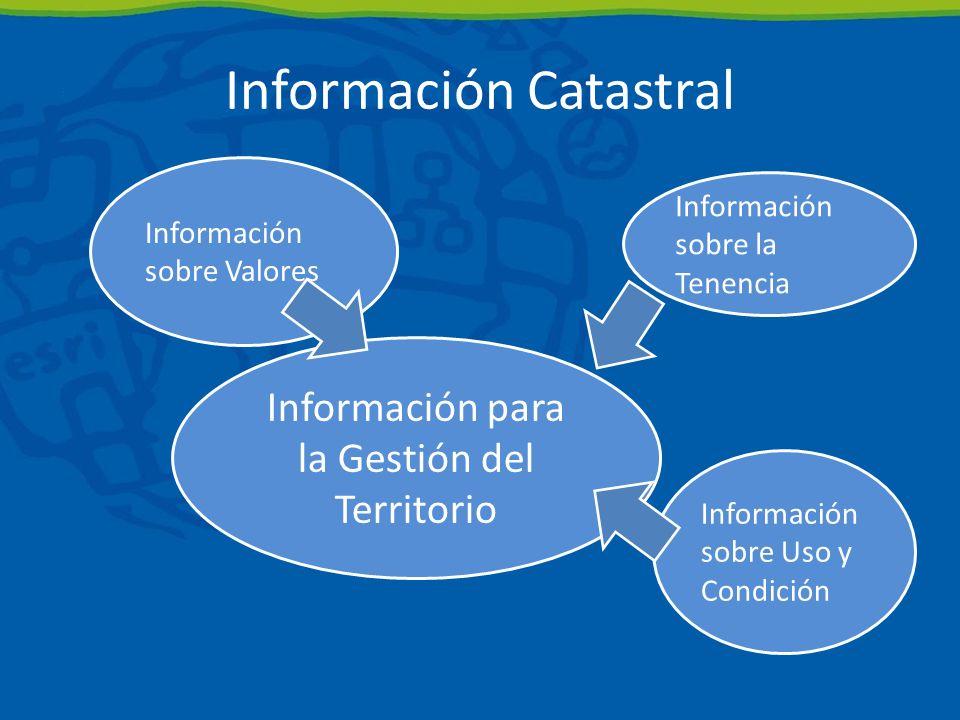 Información sobre Valores Información sobre Uso y Condición Información sobre la Tenencia Información para la Gestión del Territorio Información Catastral