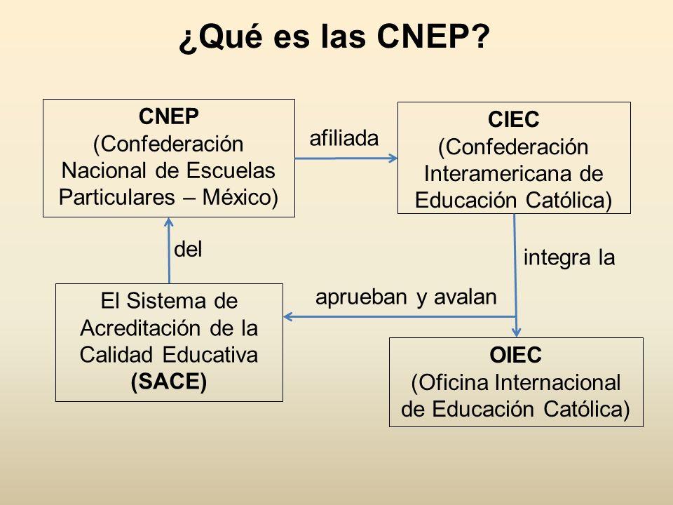 ¿Qué es las CNEP? CNEP (Confederación Nacional de Escuelas Particulares – México) CIEC (Confederación Interamericana de Educación Católica) afiliada i