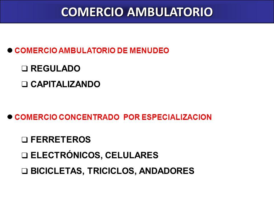 COMERCIO AMBULATORIO REGULADO REQUISITOS: Autorización anual renovable FUTURO: Permanecer siempre en la vía publica en tanto cumplan los requisitos GIROS DESARROLLADOS ARTESANIAS ARTICULOS RELIGIOSOS DIARIOS Y REVISTAS EMOLIENTE GOLOSINASLOTERIAS POTAJES TIPICOS LUSTRADO DE CALZADO