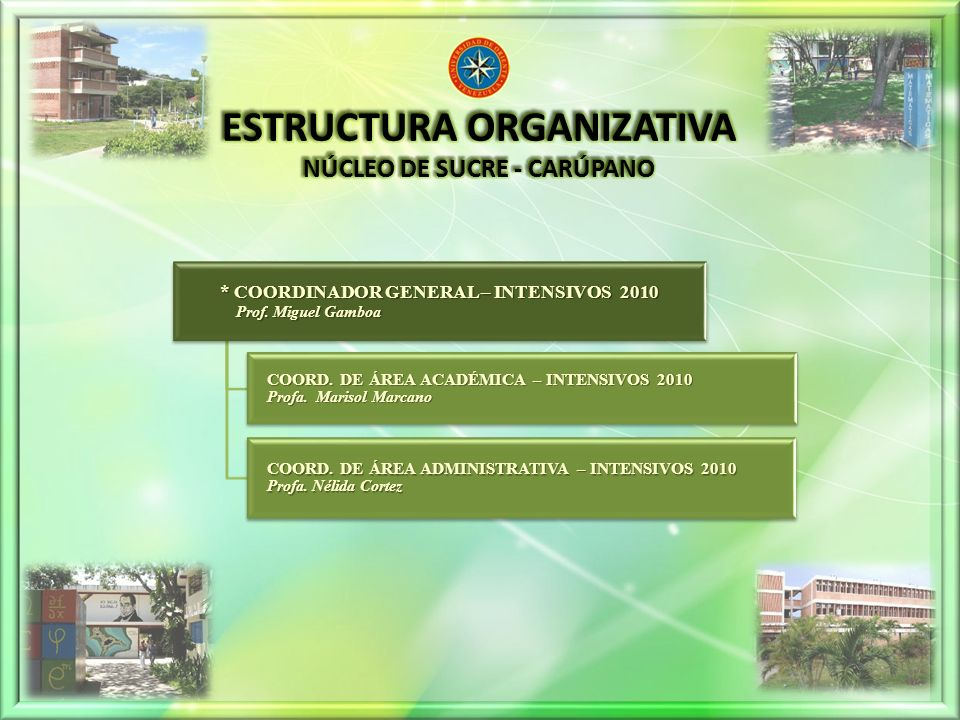* COORDINADOR GENERAL – INTENSIVOS 2010 Prof.Miguel Gamboa Prof.