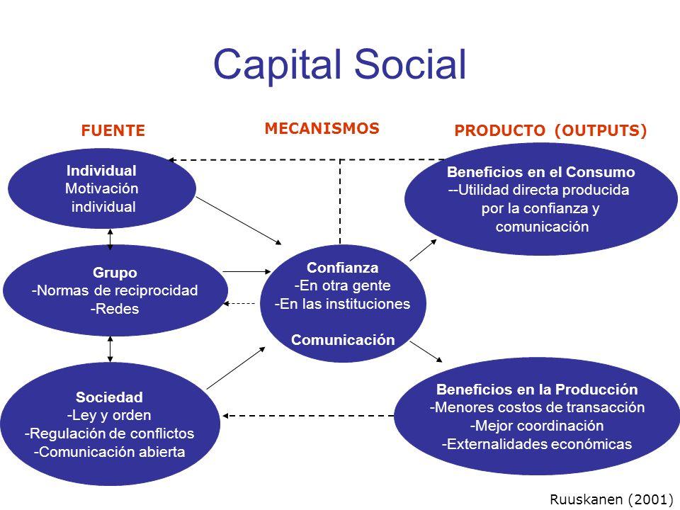 Capital Social Individual Motivación individual Grupo -Normas de reciprocidad -Redes Sociedad -Ley y orden -Regulación de conflictos -Comunicación abi