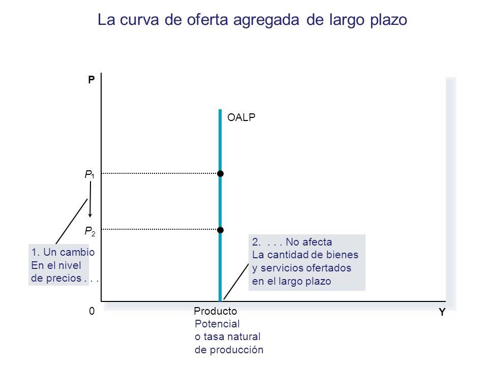 La curva de oferta agregada de largo plazo Y Producto Potencial o tasa natural de producción P 0 OALP P2P2 1. Un cambio En el nivel de precios... 2...