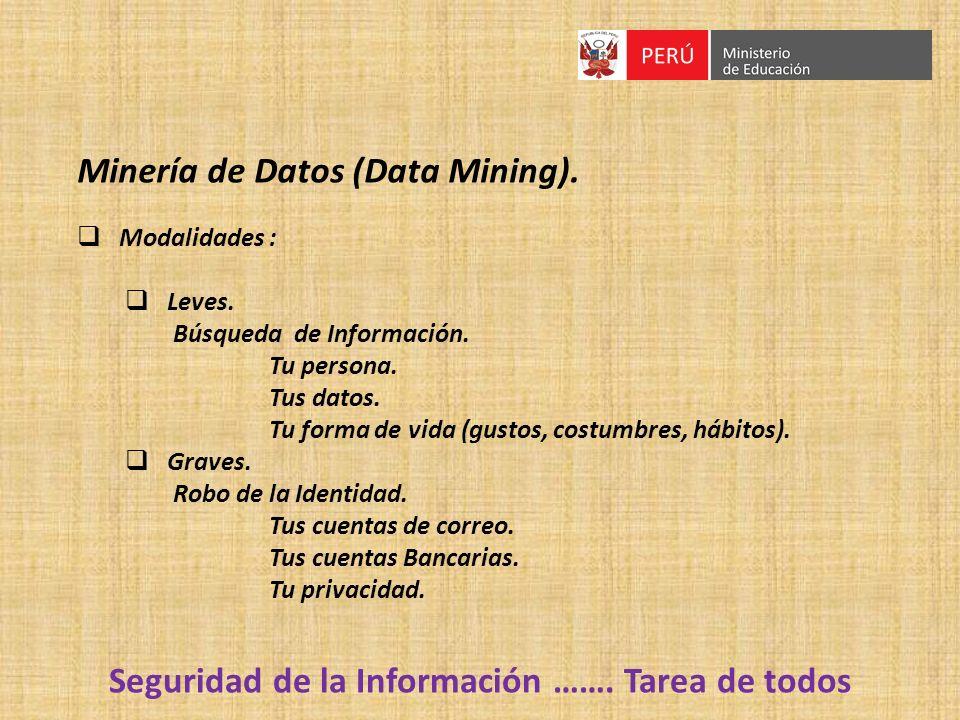 Seguridad de la Información ……. Tarea de todos Minería de Datos (Data Mining). Modalidades : Leves. Búsqueda de Información. Tu persona. Tus datos. Tu