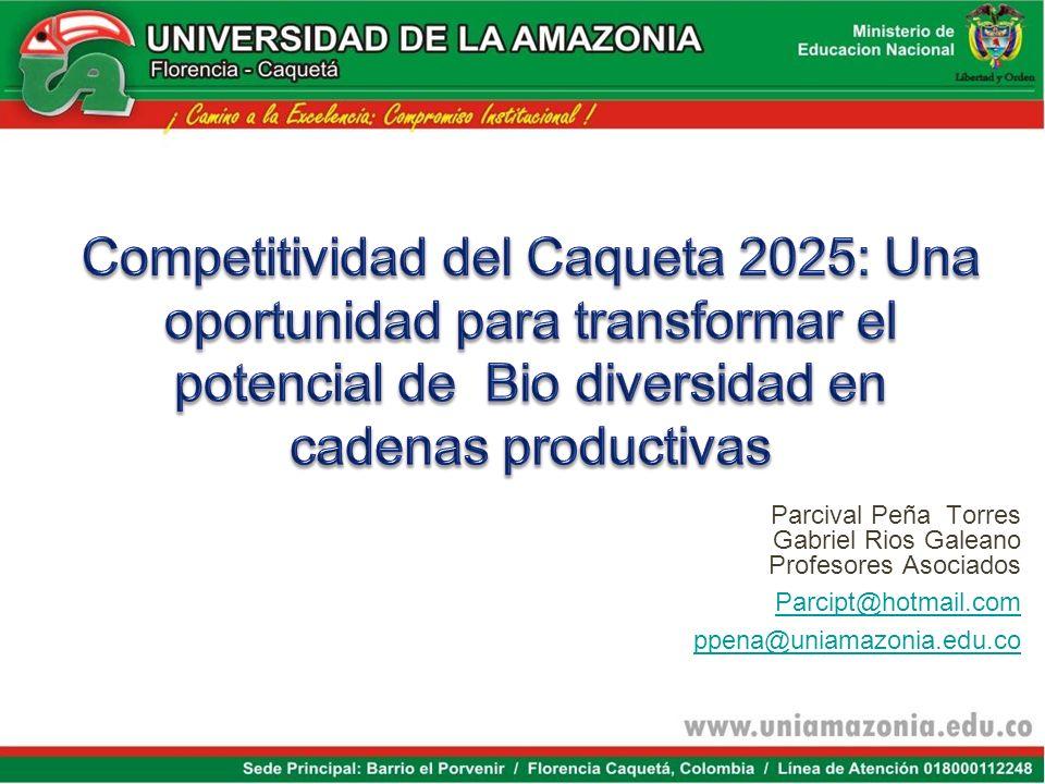 Parcival Peña Torres Gabriel Rios Galeano Profesores Asociados Parcipt@hotmail.com ppena@uniamazonia.edu.co