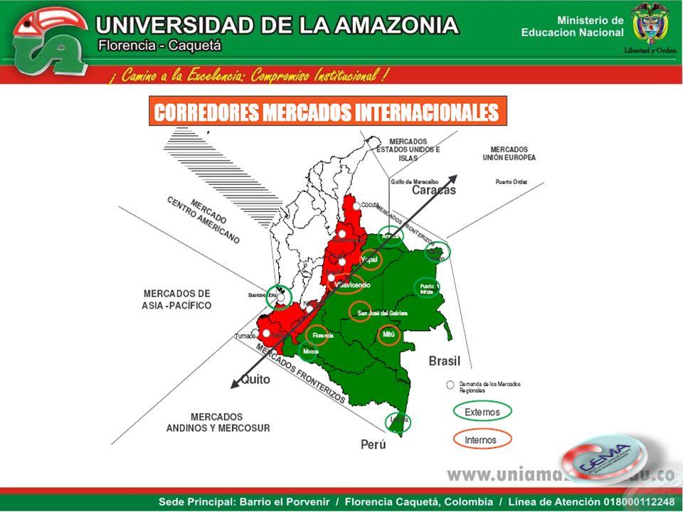 Niveles de competitividad Fuente: adaptado de Banco Mundial 2007 Economía del conocimiento Desarrollo económico Amazonas Arauca Casanare Cesar Chocó C
