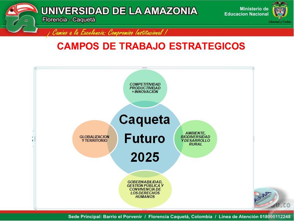 Dinámica para construir competitividad MERCADOS Apuestas Productivas del Caquetá AGROINDUSTRIA: carne, Leche, Café, Caucho, Pisicolaotros SERVICIOS: T