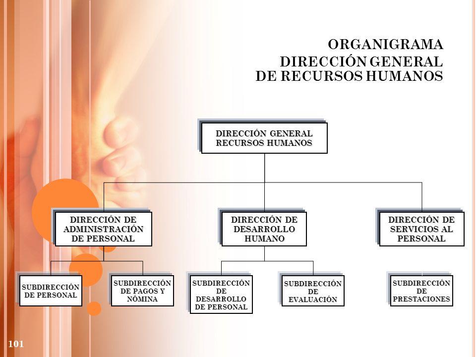 ORGANIGRAMA DIRECCIÓN GENERAL DE RECURSOS HUMANOS DIRECCIÓN GENERAL RECURSOS HUMANOS DIRECCIÓN DE ADMINISTRACIÓN DE PERSONAL DIRECCIÓN DE SERVICIOS AL