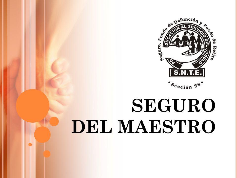 SEGURO DEL MAESTRO