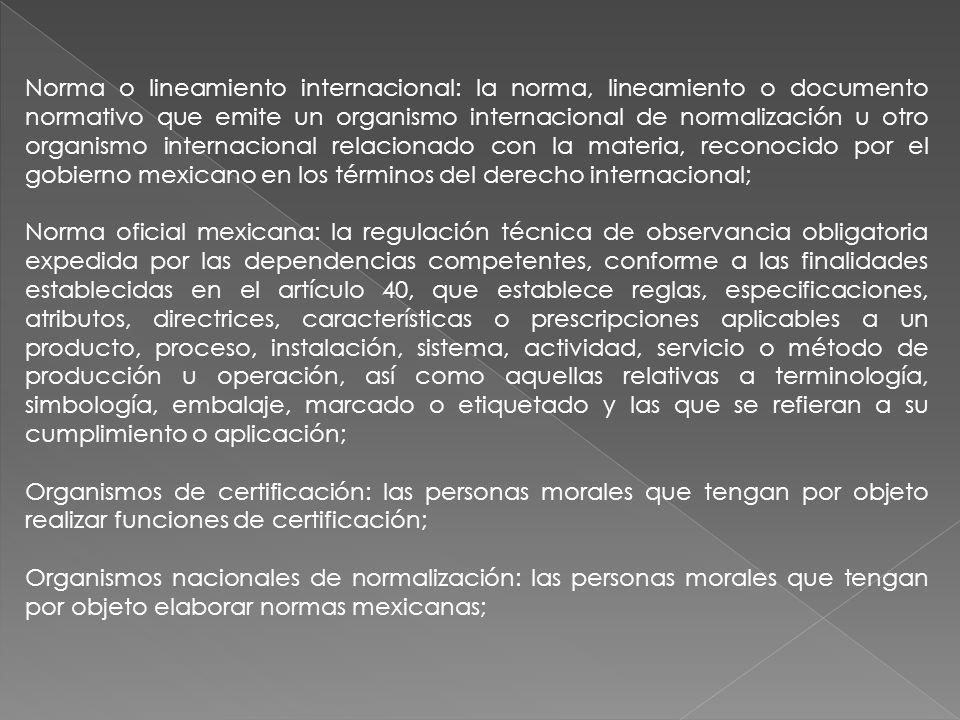 Norma o lineamiento internacional: la norma, lineamiento o documento normativo que emite un organismo internacional de normalización u otro organismo