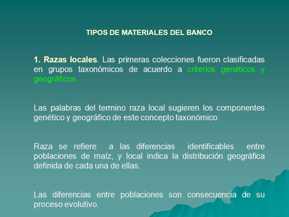 TIPOS DE MATERIALES DEL BANCO 1. Razas locales. Las primeras colecciones fueron clasificadas en grupos taxonómicos de acuerdo a criterios genéticos y