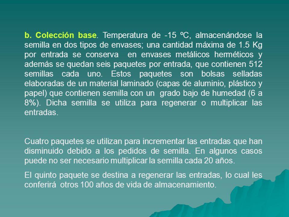 b. Colección base. Temperatura de -15 ºC, almacenándose la semilla en dos tipos de envases; una cantidad máxima de 1.5 Kg por entrada se conserva en e