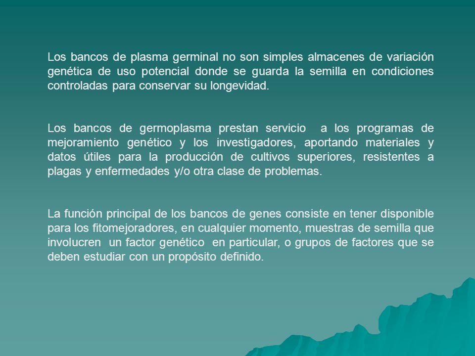 Para que la función de los bancos de germoplasma sea efectiva, es indispensable que periódicamente se actualice la información acerca de las características específicas de los materiales que se van concentrando en los bancos.