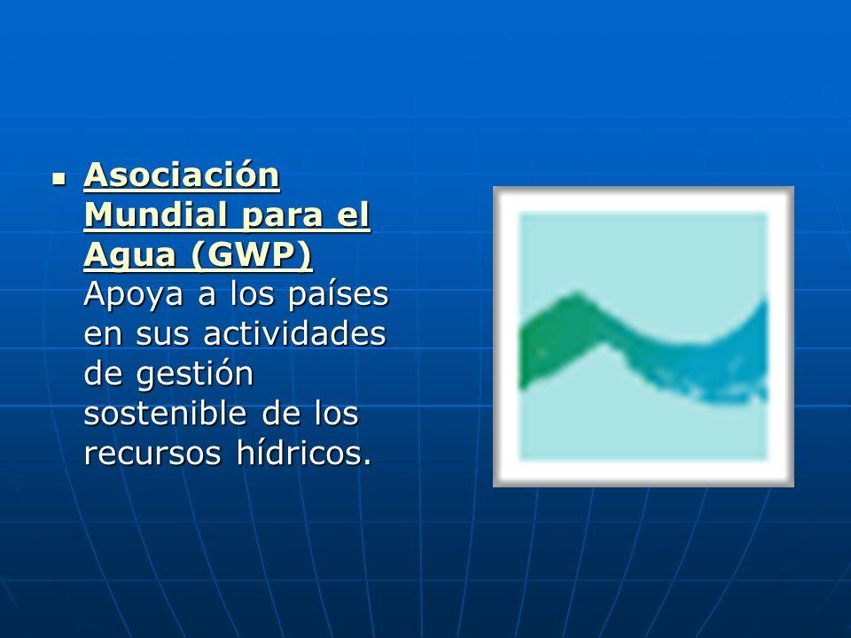Asociación Mundial para el Agua (GWP) Apoya a los países en sus actividades de gestión sostenible de los recursos hídricos. Asociación Mundial para el