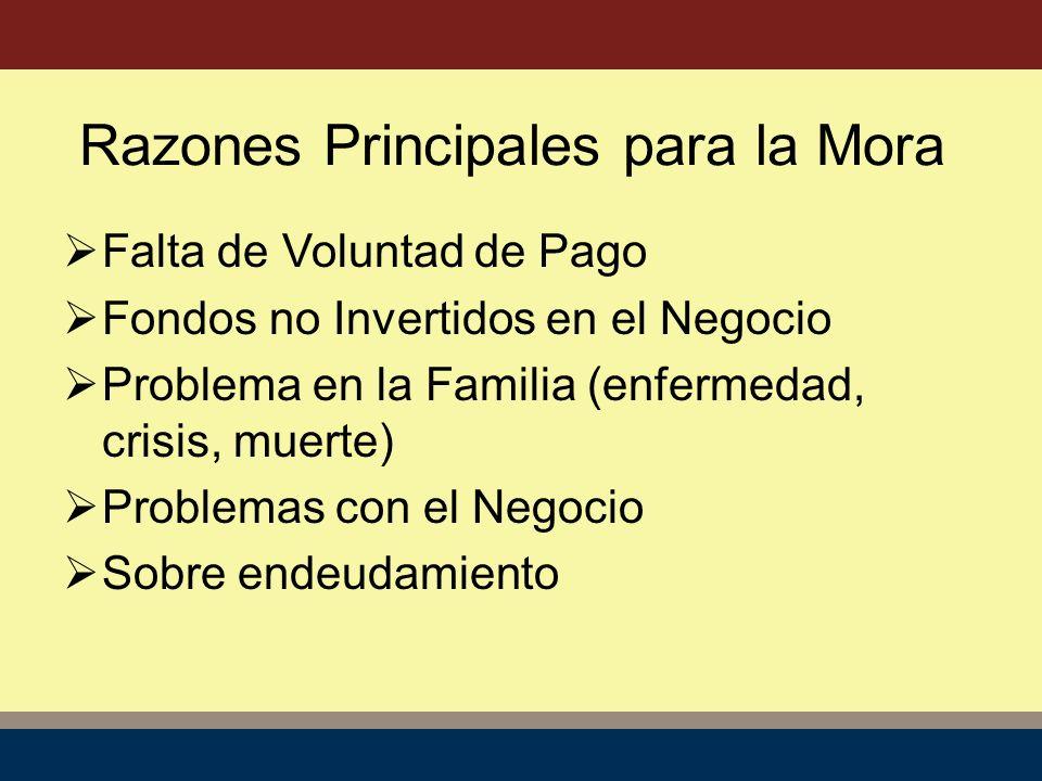 Falta de Voluntad de Pago Fondos no Invertidos en el Negocio Problema en la Familia (enfermedad, crisis, muerte) Problemas con el Negocio Sobre endeudamiento Razones Principales para la Mora