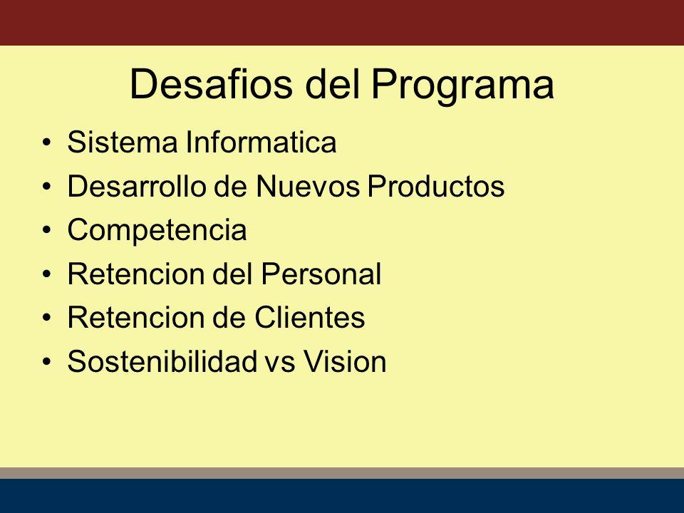 Sistema Informatica Desarrollo de Nuevos Productos Competencia Retencion del Personal Retencion de Clientes Sostenibilidad vs Vision Desafios del Programa