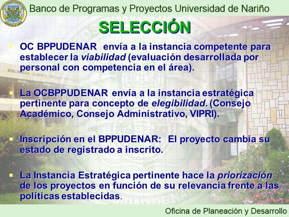 OC BPPUDENAR envía a la instancia competente para establecer la viabilidad (evaluación desarrollada por personal con competencia en el área). La OCBPP