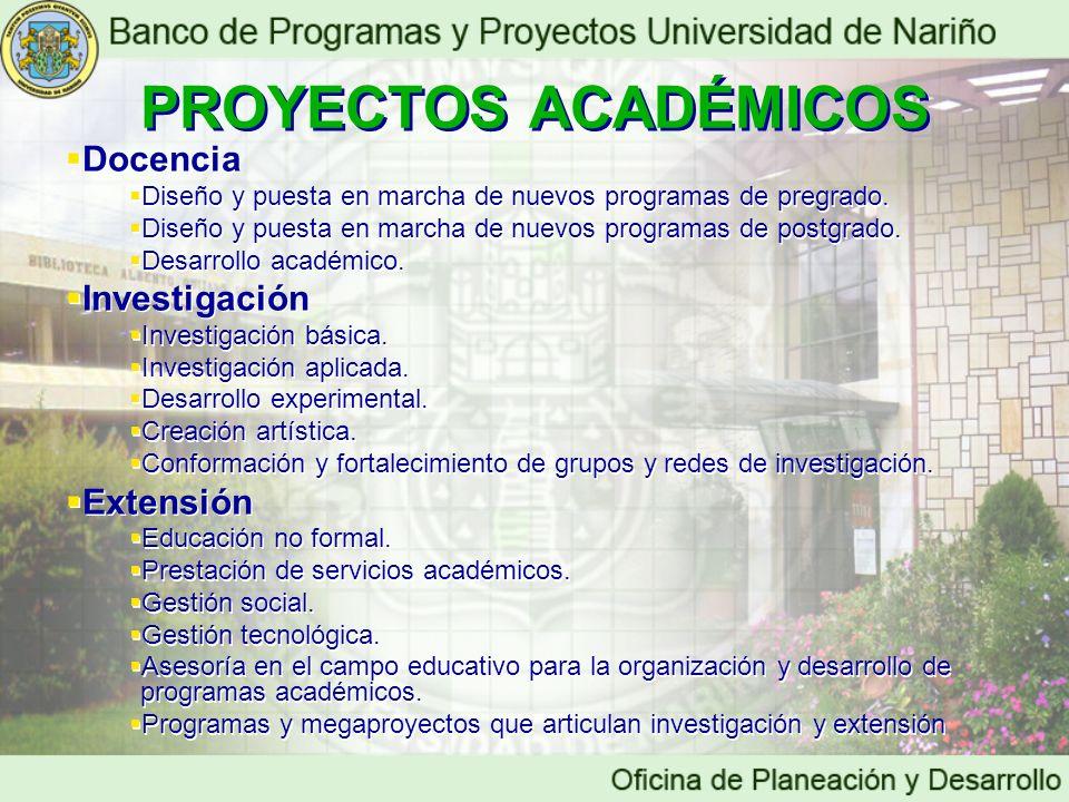 Docencia Diseño y puesta en marcha de nuevos programas de pregrado. Diseño y puesta en marcha de nuevos programas de postgrado. Desarrollo académico.