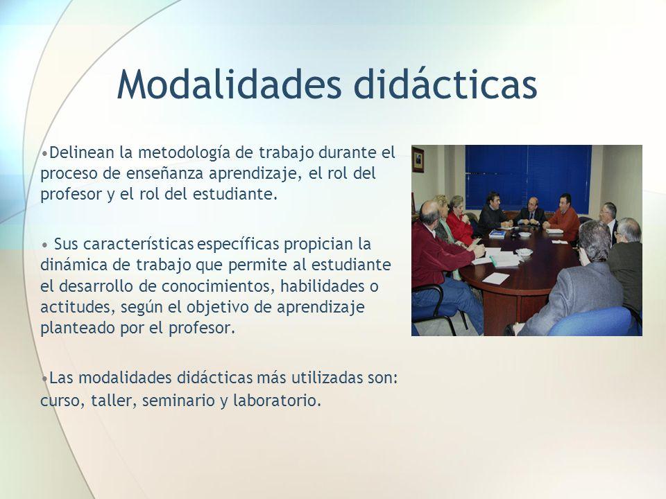 Modalidades didácticas Delinean la metodología de trabajo durante el proceso de enseñanza aprendizaje, el rol del profesor y el rol del estudiante.