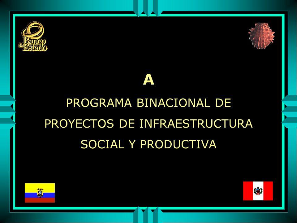 A PROGRAMA BINACIONAL DE PROYECTOS DE INFRAESTRUCTURA SOCIAL Y PRODUCTIVA