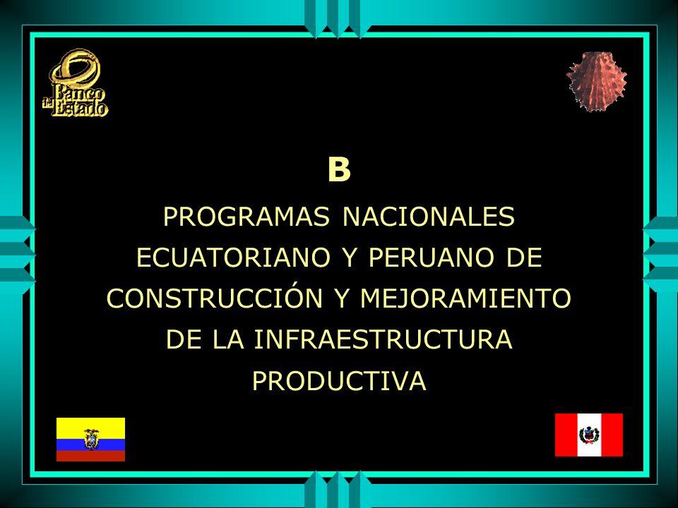 B PROGRAMAS NACIONALES ECUATORIANO Y PERUANO DE CONSTRUCCIÓN Y MEJORAMIENTO DE LA INFRAESTRUCTURA PRODUCTIVA