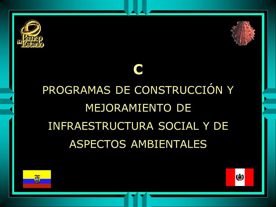 C PROGRAMAS DE CONSTRUCCIÓN Y MEJORAMIENTO DE INFRAESTRUCTURA SOCIAL Y DE ASPECTOS AMBIENTALES