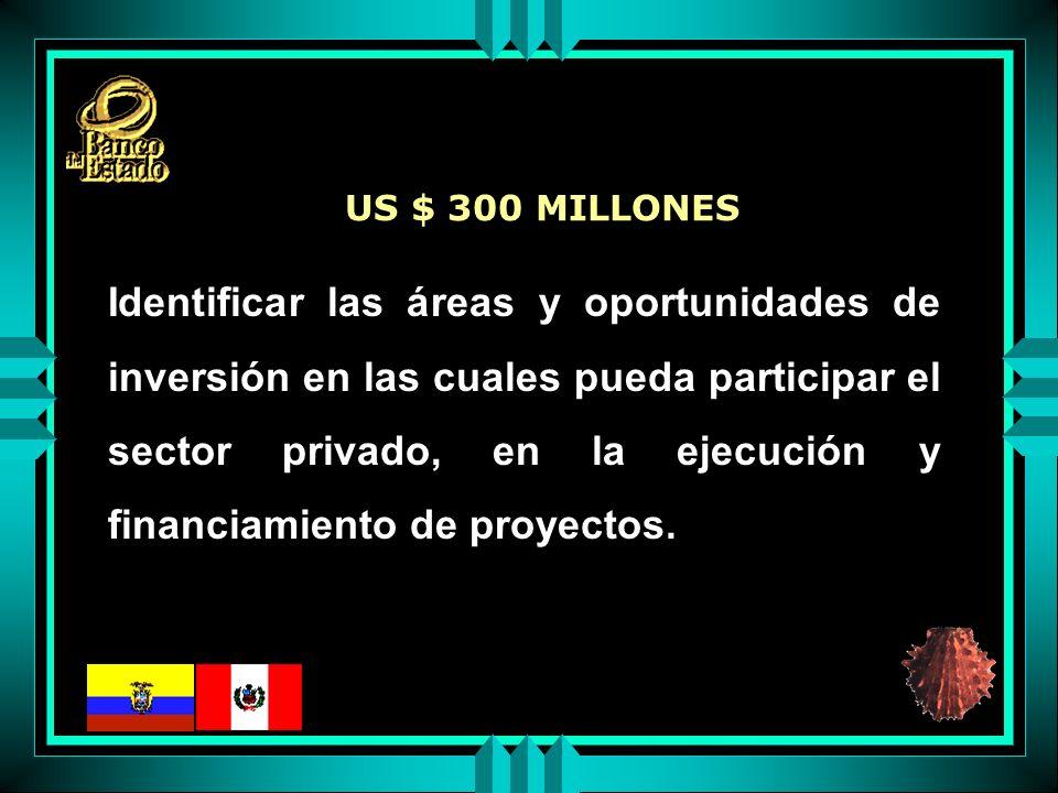 Identificar las áreas y oportunidades de inversión en las cuales pueda participar el sector privado, en la ejecución y financiamiento de proyectos.