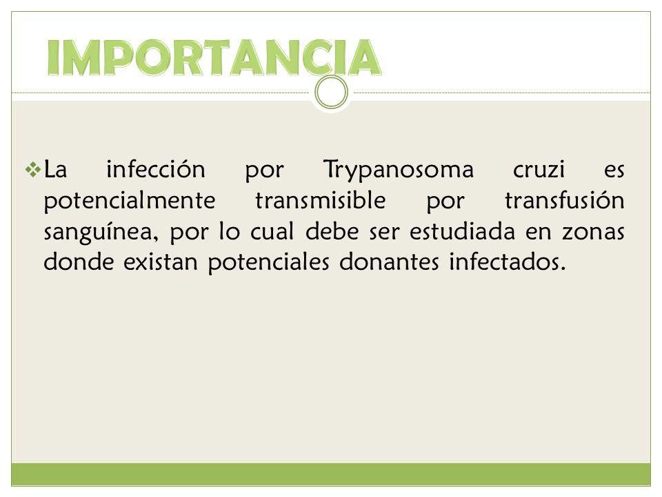 La infección por Trypanosoma cruzi es potencialmente transmisible por transfusión sanguínea, por lo cual debe ser estudiada en zonas donde existan pot