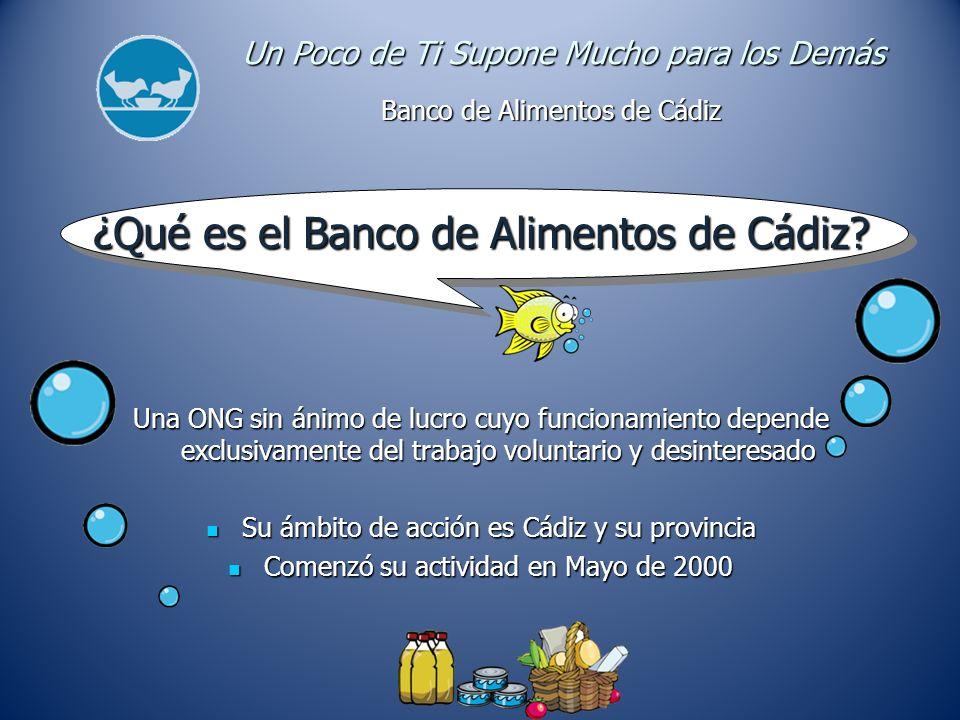 Objetivos Recoger alimentos y repartirlos gratuitamente entre las instituciones benéficas mas necesitadas de la provincia de Cádiz.