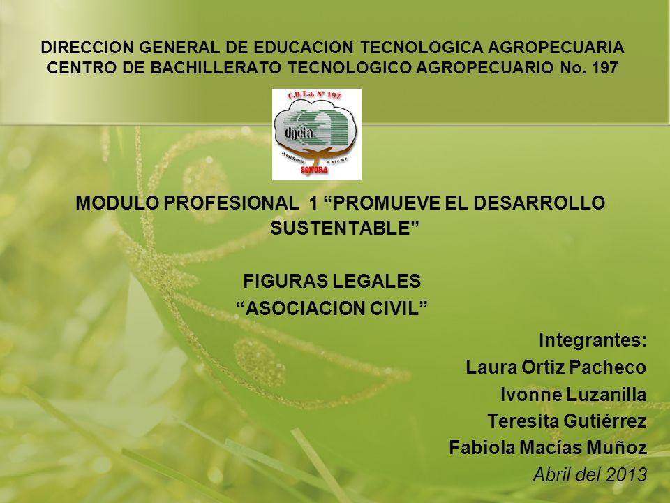 DIRECCION GENERAL DE EDUCACION TECNOLOGICA AGROPECUARIA CENTRO DE BACHILLERATO TECNOLOGICO AGROPECUARIO No. 197 MODULO PROFESIONAL 1 PROMUEVE EL DESAR