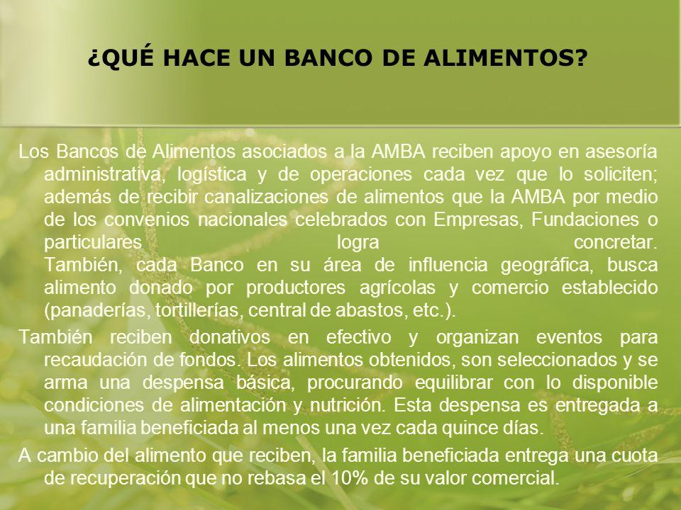 ¿QUÉ HACE UN BANCO DE ALIMENTOS? Los Bancos de Alimentos asociados a la AMBA reciben apoyo en asesoría administrativa, logística y de operaciones cada