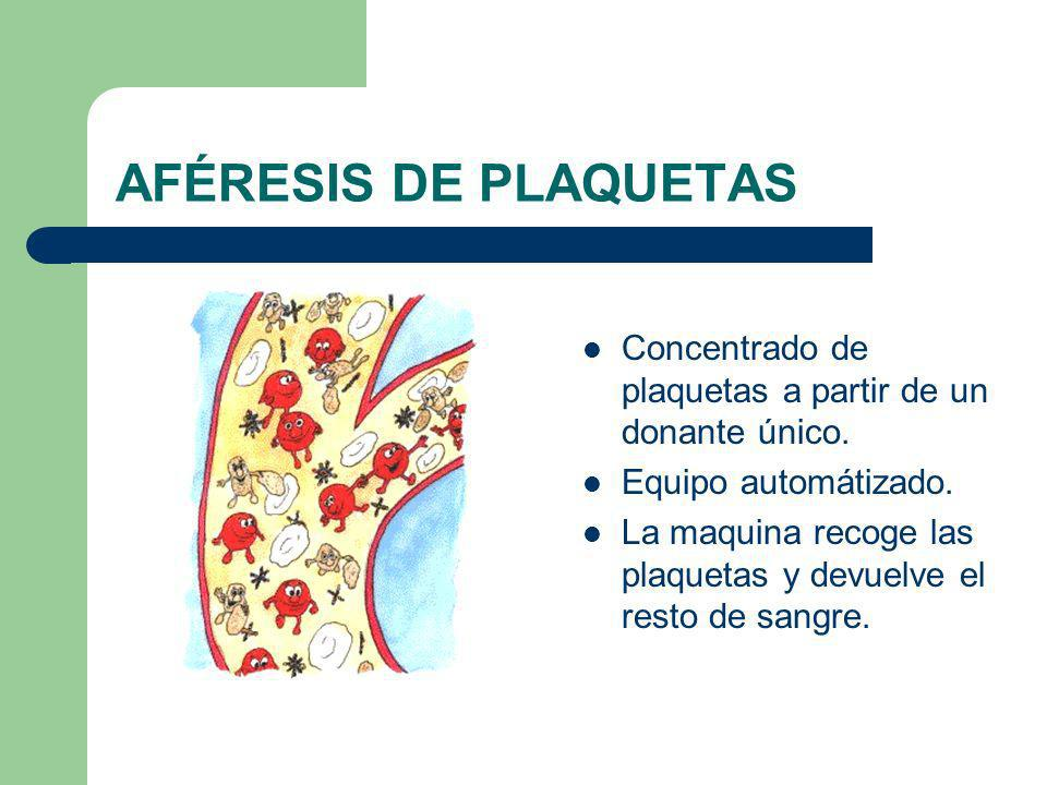 AFÉRESIS DE PLAQUETAS Concentrado de plaquetas a partir de un donante único. Equipo automátizado. La maquina recoge las plaquetas y devuelve el resto