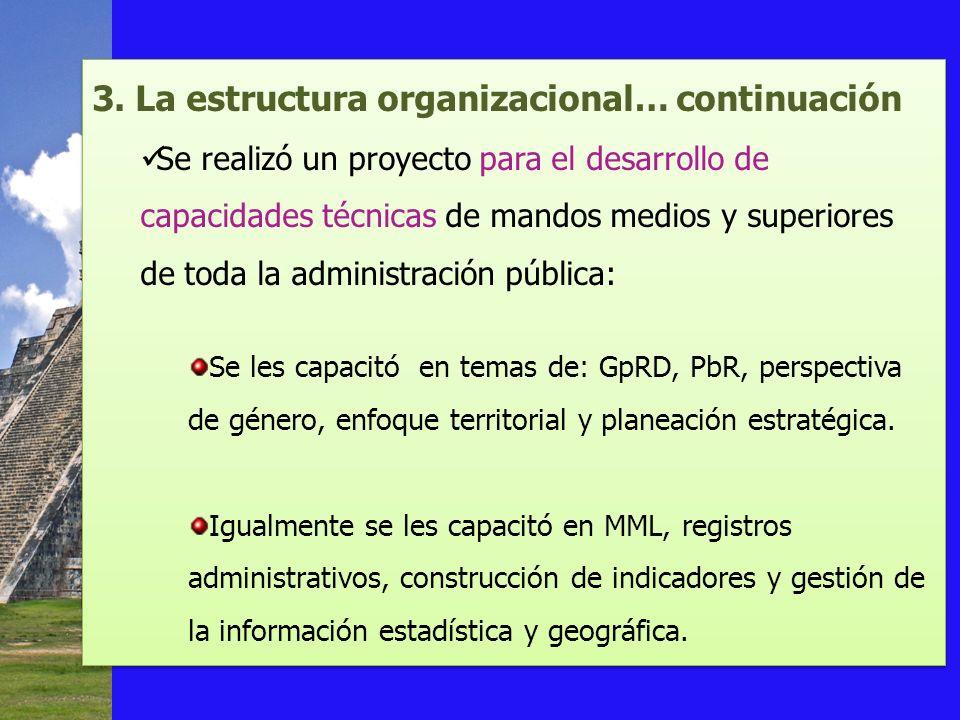 3. La estructura organizacional… continuación Se realizó un proyecto para el desarrollo de capacidades técnicas de mandos medios y superiores de toda