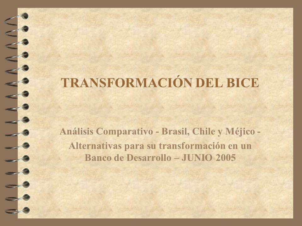 TRANSFORMACIÓN DEL BICE Análisis Comparativo - Brasil, Chile y Méjico - Alternativas para su transformación en un Banco de Desarrollo – JUNIO 2005