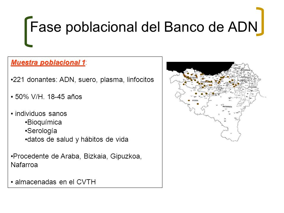 Fase poblacional del Banco de ADN Muestra poblacional 1 Muestra poblacional 1: 221 donantes: ADN, suero, plasma, linfocitos 50% V/H. 18-45 años indivi